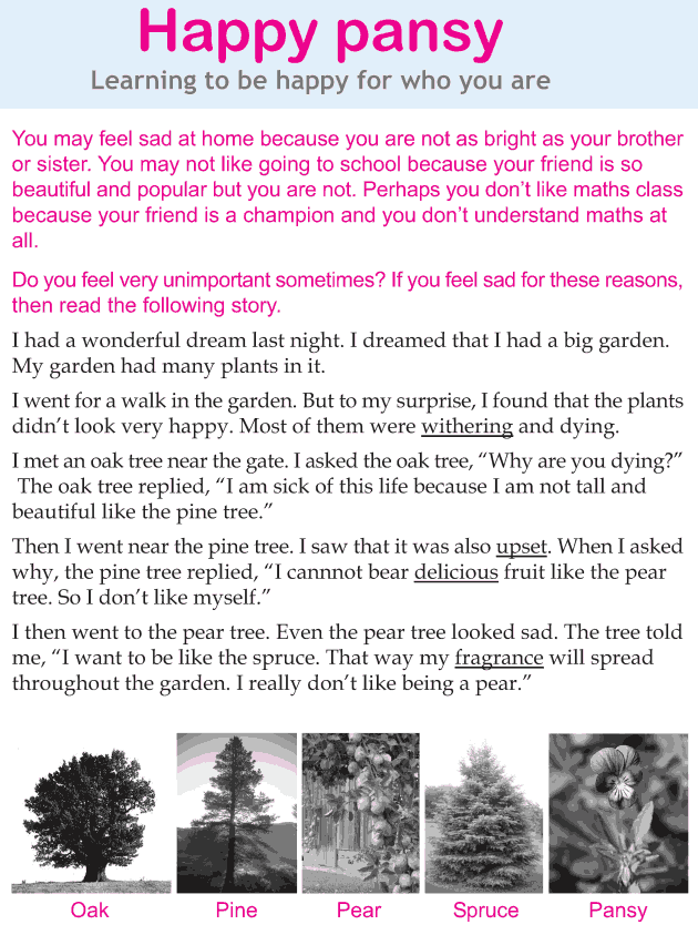 Personality development course grade 3 lesson 2 Happy pansy (1)